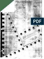 Project Management (Guide Lines) - BP Amoco Rev-1.pdf