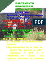 3[1]  programa actividades II