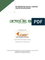 Programa de Bienestar Social Laboral y Salud Ocupacional