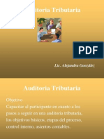 Auditoria Tributaria 1