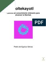 Toltekayotl - Pedro de Eguiluz Selvas