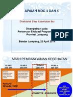 Lampung_evKesIbu_22April2014