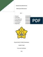 Tugas Kelompok 1 Sistem Hidrotermal