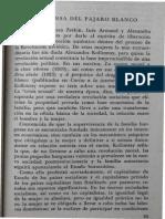 Rosario Ferré - En Defensa Del Pájaro Blanco