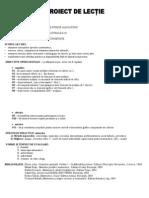Model Proiect Predare Numar Si Cifra