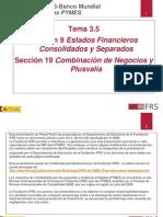 Seccion 9 de NIIF Para Pymes