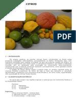 Cultura dos Citros – Alves, P. R. B. e Melo B..pdf