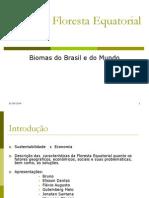 Floresta Equatorial (1)