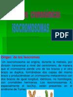 Cromosomas en Anillo