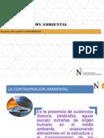 Contaminación Ambiental_ppt