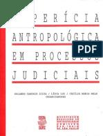 A Períciaantropologica Em Processos Judiciais