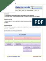 Leitejr Infobasica Completo 14
