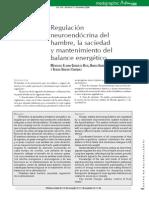 ¿Qué causa el hambre? regulación neuroendocrina
