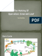 The Making Of Operation Emerald Leaf