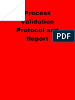 Process Validation Protocol and Report