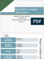 valoracingeritricaintegral-131227133727-phpapp02