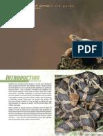 Wild Ohio 2009 Reptiles