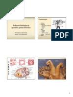 AA1- Anatomo-fisiologia Do Aparelho Genital Feminino