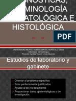 Ayudas Diagnosticas, Terminología Dermatológica e Histológica