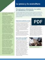 Pesca y Acuicultura FAO