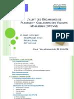 L_audit Des OPCVM