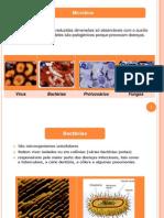 Micro Bios