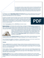 Impregniranje i Prepariranje platna / Impregnating and Prepariranje Canvas