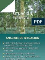 Situación Forestal