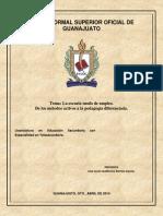 Tercer Ensayo Asesoría y Tutoría..docx
