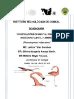 Instituto Tecnológico de Conkal Flamenco