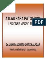 atlas-para-patologia.pdf