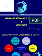 Organisation Culture and Diversity Lecture 3