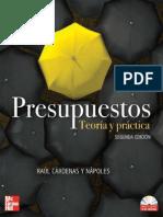 Presupuestos Teoria y Practica
