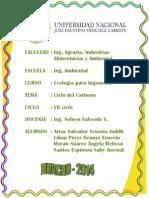 CICLO DEL CARBONO - ECOLOGÍA.docx
