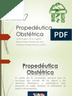 Propedéutica obstétrica
