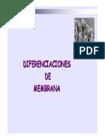 10_29diferenciaciones de Membrana _5bsólo Lectura_5d