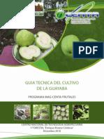 Guia Cultivo Guayaba