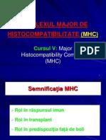 MHC-imunitate6