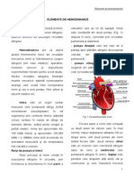 hemodinamica-FMAM 5