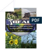 South African Biofuels - Policy Brief