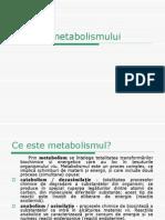 bio-120606104212-phpapp02