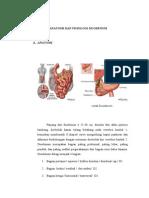 Anatomi Dan Fisiologi Duodenum Print