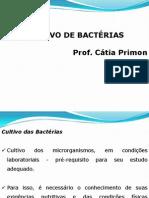 cultivo de bactérias - aula 6.pptx