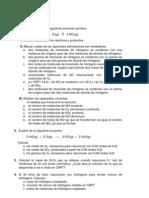 Guía de Ejercicios Estequiometría 2