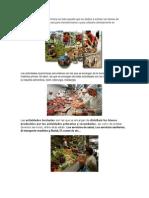 La Actividad Económica Primaria