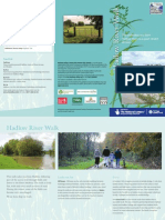 Hadlow River Walk