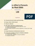 Despre Stiluri Şi Formate În Word 2003