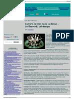 Sisyphe.org - Culture Du Viol Dans La Danse - Le Sacre Du Pr