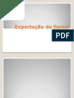 Exportação de Floresslide