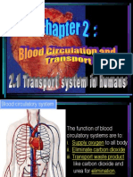 2.1 Blood Circulation